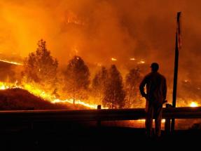 California ofrece incentivos adicionales a la solar y al almacenamiento a raíz de los incendios