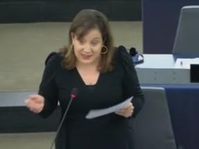 Los socialistas europeos piden que el próximo Marco Financiero destine al menos el 30% de sus fondos a la lucha contra el cambio climático