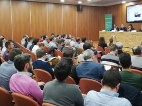 Valencia tramita 5.000 megavatios de nueva potencia renovable