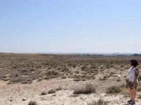 La Almunia cede 30 hectáreas de secano municipal por 12.000 euros/año para un parque solar de 13 megavatios