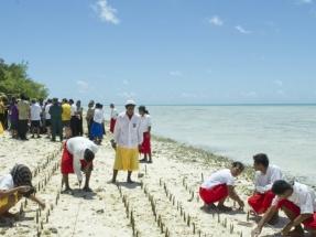 El Comité de Derechos Humanos de la ONU abre la puerta a las solicitudes de asilo por cambio climático