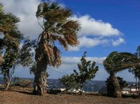 El Ministerio de Energía dice no a la prórroga que pide la eólica canaria