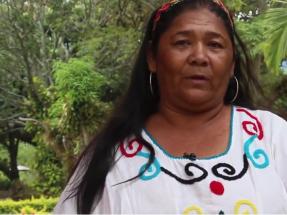 Mujeres Wayuu miran a Endesa