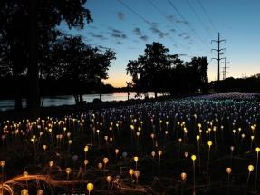El precio de la iluminación LED se ha reducido hasta un 90% en los últimos seis años