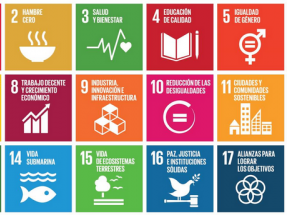 El cumplimiento de los ODS es clave en la lucha contra el cambio climático