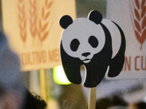 WWF España busca técnico en clima y energía para su sede en Madrid