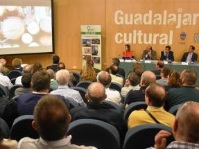 Guadalajara tendrá en dos años su red de calor con biomasa