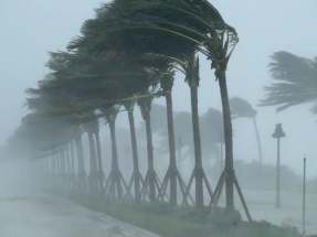 Siemens Gamesa suministrará turbinas a prueba de tifones a cuatro parques eólicos del Japón