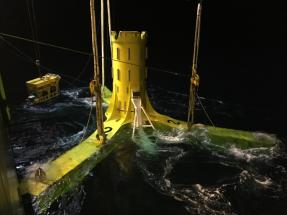 Escocia, escenario de un estudio pionero sobre la interacción de los mamíferos marinos con las turbinas mareomotrices