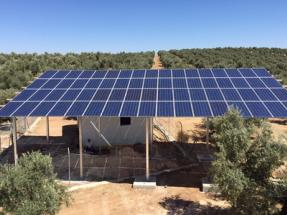 Seis razones para llevar la energía del sol a las explotaciones agrícolas