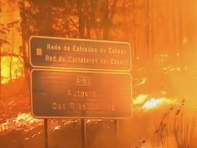La política forestal y el deterioro climático, factores clave en los incendios de Galicia