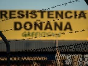 Greenpeace entrega al Gobierno más de 75.000 firmas contra el proyecto de Gas Natural Fenosa en Doñana