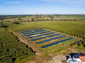 El Instituto de Energía Solar desarrolla un sistema de riego fotovoltaico que ahorra hasta el 80% en energía