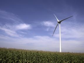 Acciona se hace con el control del parque eólico Ripley de Ontario