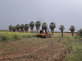 Enel Green Power inicia la construcción de su segunda planta solar en Sevilla