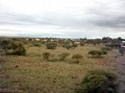 Isolux Corsán construirá una planta FV de 60 MW en Sudáfrica
