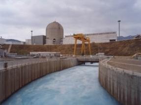 Una fuga en el sistema de refrigeración obliga a parar la central nuclear de Vandellós