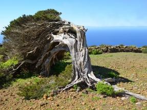 ¿Una hora menos en Canarias? No, siete años por detrás