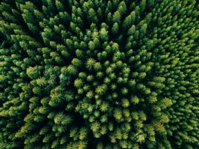 Viesgo acredita una reducción en un 53% de su huella de carbono en su negocio de distribución