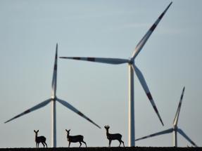 El viento produjo en Europa ayer casi uno de cada cinco kilovatios