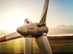 Windsourcing abre tienda online