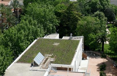 Las cubiertas verdes pueden reducir hasta un 50 % el consumo energético