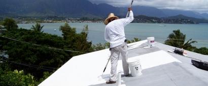Los llamados techos frescos ayudan al ahorro en el uso del agua de irrigación urbana