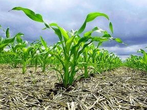 La CE premia el proyecto Life+ Agricarbon por su aportación en la lucha contra el cambio climático