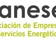 Elena González, nueva gerente de Anese