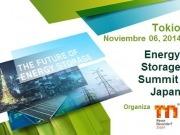 Japón organizará en noviembre su primera conferencia internacional sobre Almacenamiento de Energía
