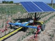Castilla La Mancha apoyará a los jóvenes agricultores que creen empresas que usen renovables