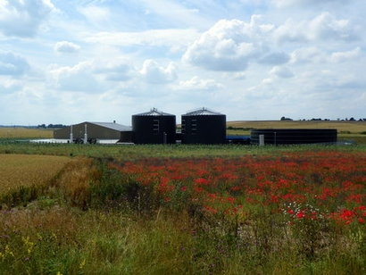 Anaerobic digestion industry responds to Ecotricity 'vegan electricity tariff'