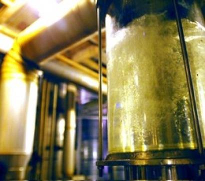 Nace Raízen, un nuevo gigante en el etanol