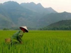 Vestas achieves financial close on Vietnamese wind farm