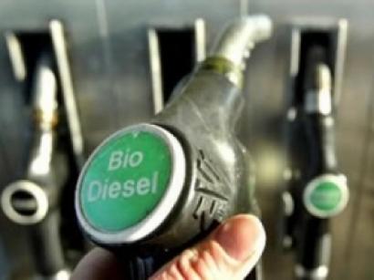 Los esquemas de certificación de biodiésel de aceite de palma, los menos cuestionados