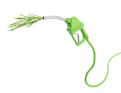 """Vidal-Quadras: """"los biocarburantes presentan algunos problemas como fuente de energía"""""""