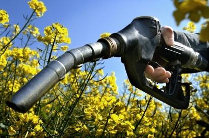 España: objetivos bajos de biocarburantes y descenso brutal del consumo