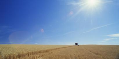 La UE tendrá en cuenta el cambio indirecto del uso del suelo de los biocarburantes