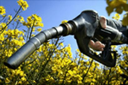 BRASIL: Aumenta el corte de biodiésel hasta el 8%, y se anuncia que será 9% en 2018 y 10% en 2019