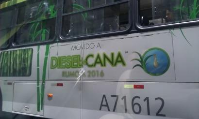 Caña de azúcar: etanol, electricidad y ahora biodiésel
