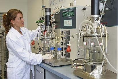 El Cener investiga para obtener bioetanol de restos de melocotones y kiwis