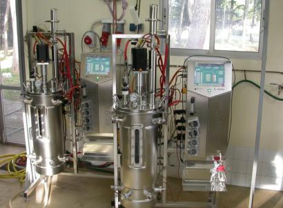 Veinte años de biocarburantes avanzados en el Ciemat y ocho proyectos en marcha