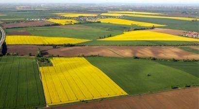 El Parlamento Europeo avanza en la reducción de los biocarburantes convencionales