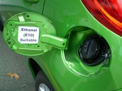 Apoyo firme de Bulgaria, Chequia, Eslovaquia y Polonia a los cultivos para biocarburantes y el E10