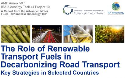 El programa de Bioenergía de la Agencia Internacional de la Energía promueve eco-combustibles que no son biocarburantes