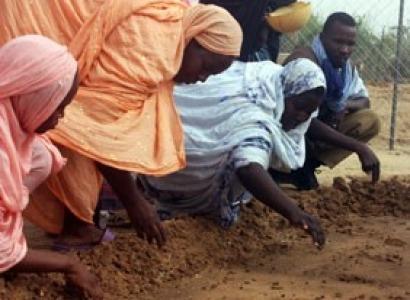 Compañías occidentales acaparan la producción de biocarburantes en África