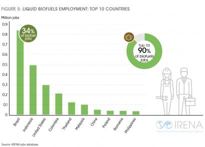 Biocarburantes: principales responsables del crecimiento del empleo mundial en renovables en 2019