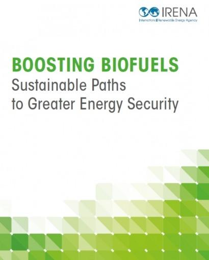 Irena asegura que con cultivos y residuos se cubriría toda la demanda de combustibles para el transporte