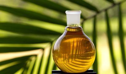 El aceite de palma no alivia la pobreza de las comunidades locales más aisladas