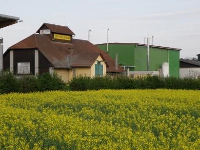 Metanol, microalgas de agua dulce y residuos de colza para biocarburantes